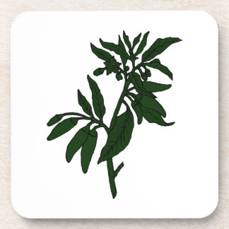 Green chili peppers on dark green plant beverage coaster