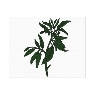 Green chili peppers on dark green plant canvas print