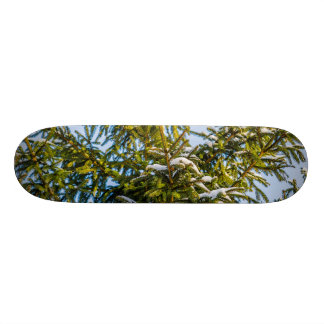 Green Christmas Tree In Snow Skateboard Deck