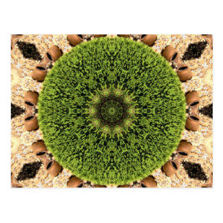 Green Circular Kaleidoscopic Postcard