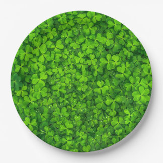 Green Clover Leaves with Water Drops Paper Plate