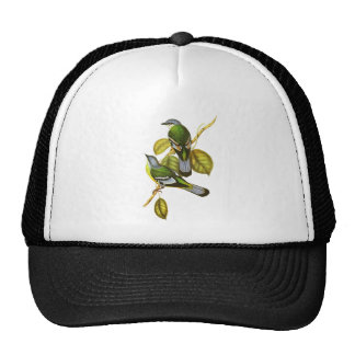 Green Cochoa Hat