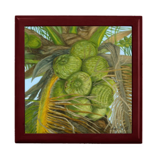 Green Coconut Gift Box