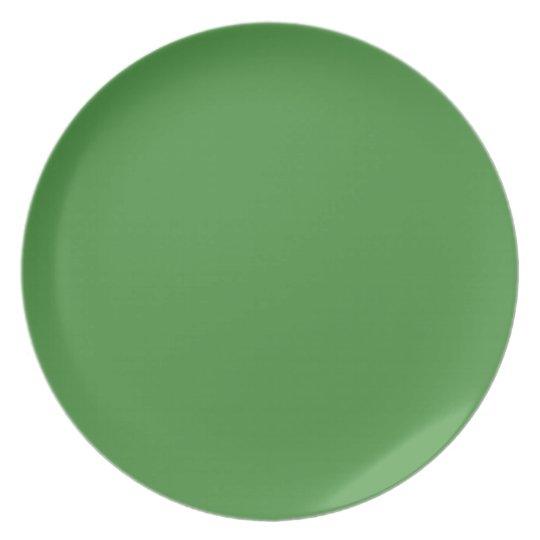 Green Color Dinner Plate