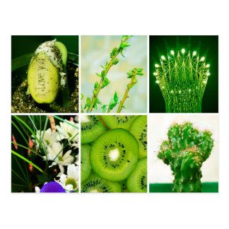 Green color postcard