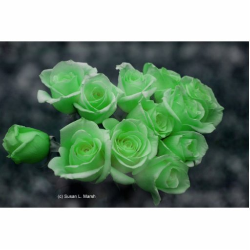 Green colorized bunch roses standing photo sculpture