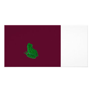 green colorized frong against burgundy card