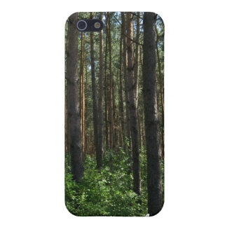 Green Coniferous Forest Pines iPhone 4 Case