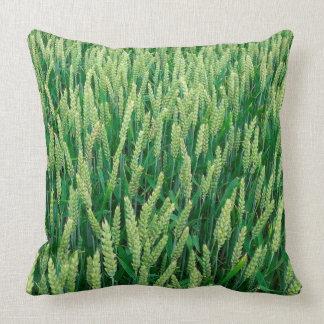 Green corn field cushion for cuddling