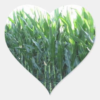 Green corn field on summer day heart sticker