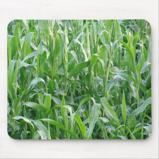 Green cornfield - Mousepad