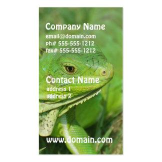 Green Creeping Lizard Business Cards