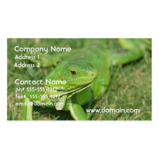 Green Creeping Lizard Business Card