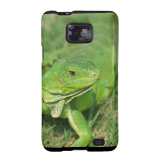 Green Creeping Lizard Galaxy S2 Cases