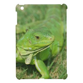 Green Creeping Lizard iPad Mini Case