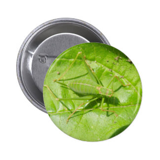 Green Cricket Camouflage Button
