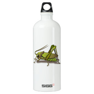 Green Cricket Insect Water Bottle