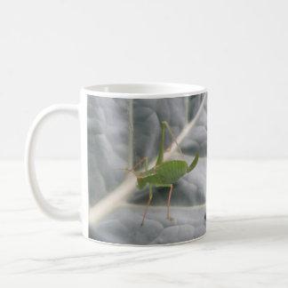 Green Cricket Macro Bug Mug