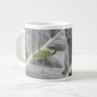Green Cricket Macro Mug