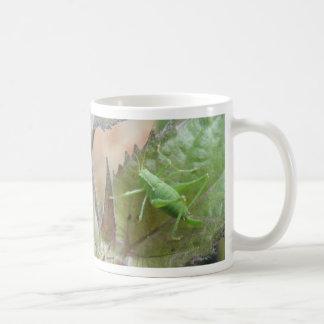 Green Cricket on a Leaf Bug Mug