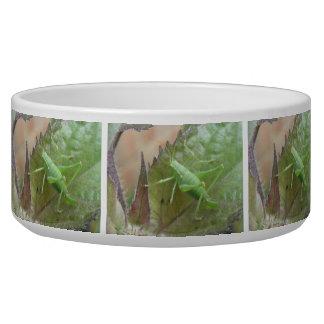 Green Cricket on a Leaf Dog Bowl