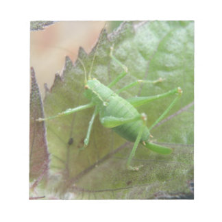 Green Cricket on a Leaf Notepad