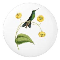 Green Crowned Brilliant Hummingbird Ceramic Knob