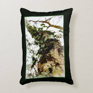 green cushion natural forest autumn winter ivy