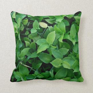 Green cushion texture plants, natura. pillow