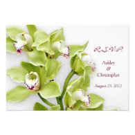 Green Cymbidium Orchid Wedding Reply RSVP Card Announcements