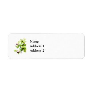 Green Cymbidium Orchids Custom Return Address Labels