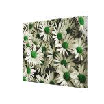 Green Daisy World Canvas Print