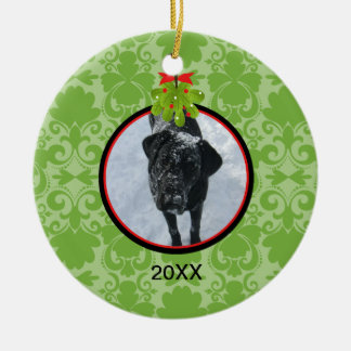 Green Damask Photo With Mistletoe Pet Ornament
