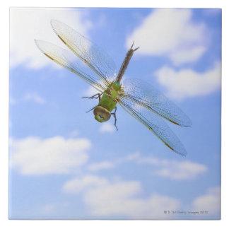 Green darner (Anax junius) flying against clouds Tile