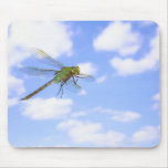 Green darner (Anax junius) flying against Mouse Pad