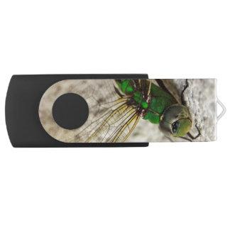 Green Darner Dragonfly Resting USB Flash Drive