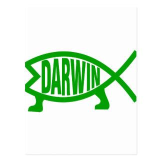 Green Darwin Fish Postcard