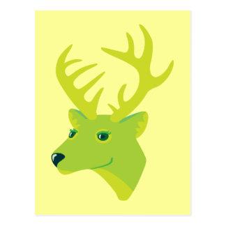 Green Deer Postcards