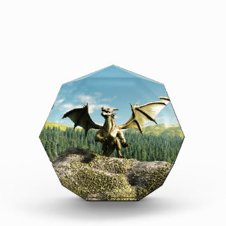 Green Dragon Perched on a Rock Acrylic Award