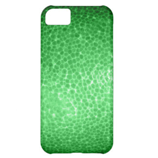 Green dragon skin, looks like dinosaur leather! cover for iPhone 5C