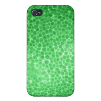 Green dragon skin, looks like dinosaur leather! iPhone 4/4S cover