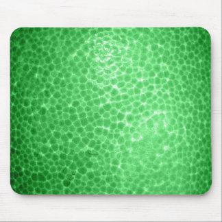 Green dragon skin, looks like dinosaur leather! mouse pad