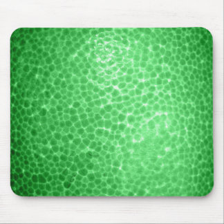 Green dragon skin, looks like dinosaur leather! mouse pads