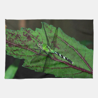 Green Dragonfly Towels
