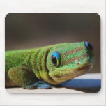 Green Dude Mouse Pads