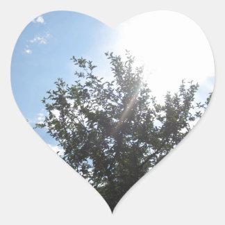 Green Earth Sky NewJersey CherryHill USA NVN685 FU Heart Sticker