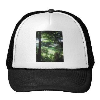 GREEN Earthday Global+Warming America NVN679 FUN Mesh Hat