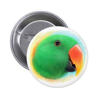 Green eclectus parrot realistic painting pinback button