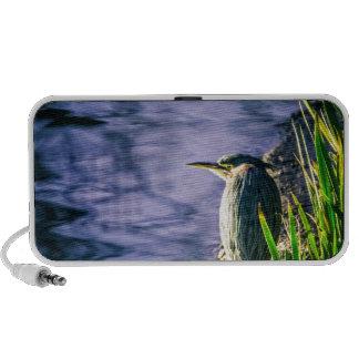 Green Egret iPod Speakers
