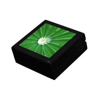 Green Energy Gift Box